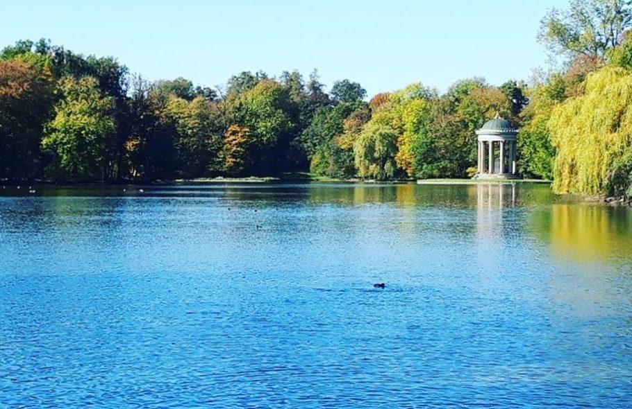 Ein Teich im Schlosspark Nymphenburg.